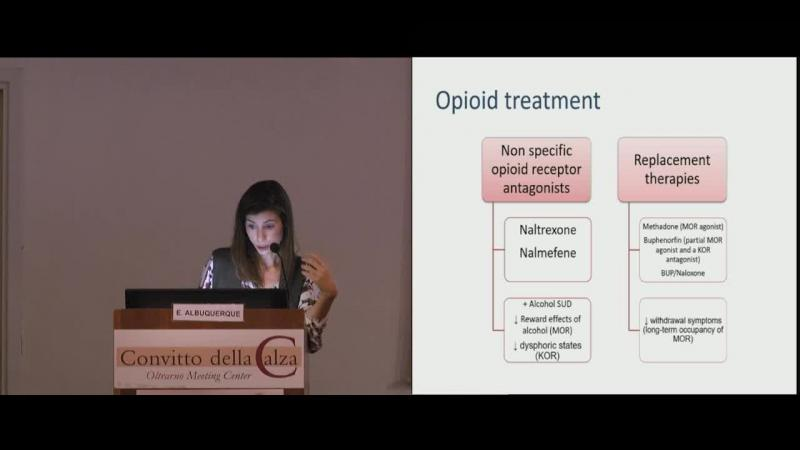 Opioid treatment: a new way to understand addiction